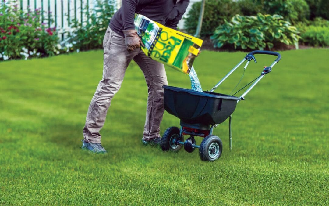 An easy spring guide to a green, weed-free lawn